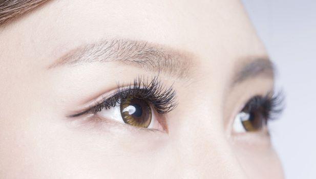 caucasian woman brown eyes eyelashes