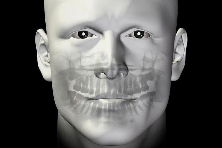 Illustration showing internal structures of a man's face