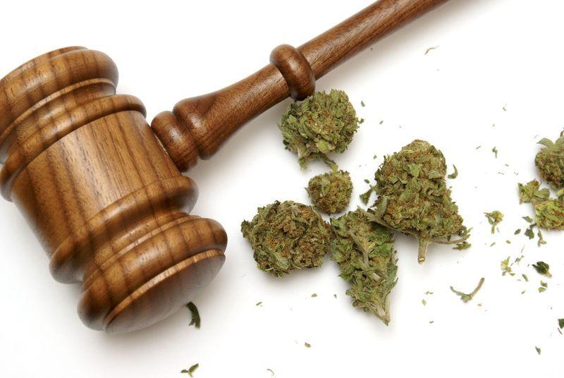 Marijuana next to gavel