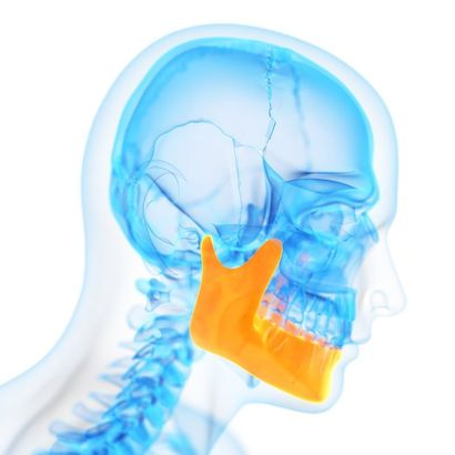 Skeleton of the face with the TMJ highlighted in yellow