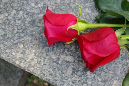 Red roses on top of a headstone.