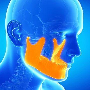 Highlighted temporomandibular jaw.