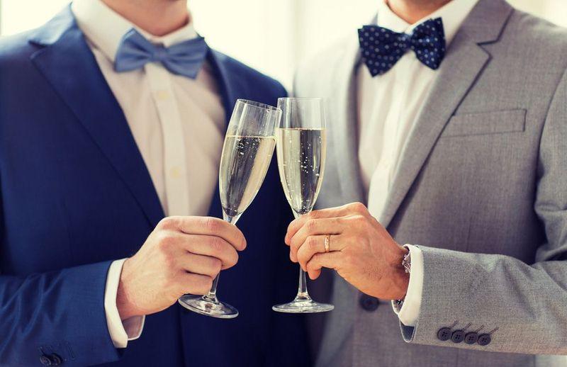 Image of same-sex couple celebrating domestic partnership