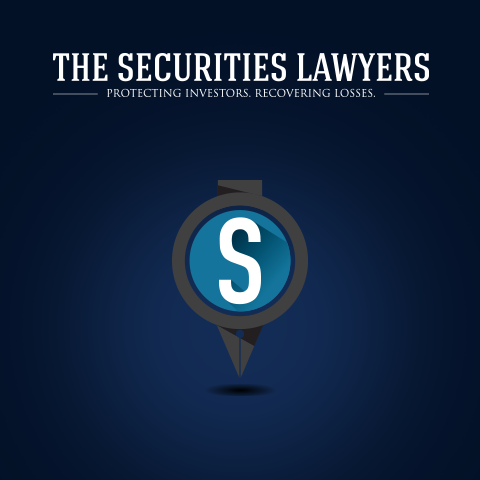 The Securities Lawyers.