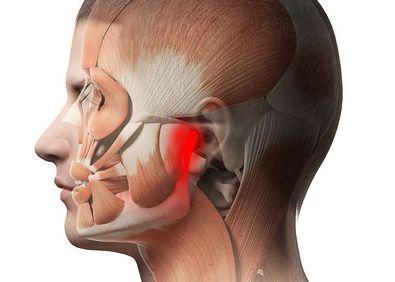Digital anatomical illustration highlighting jaw pain