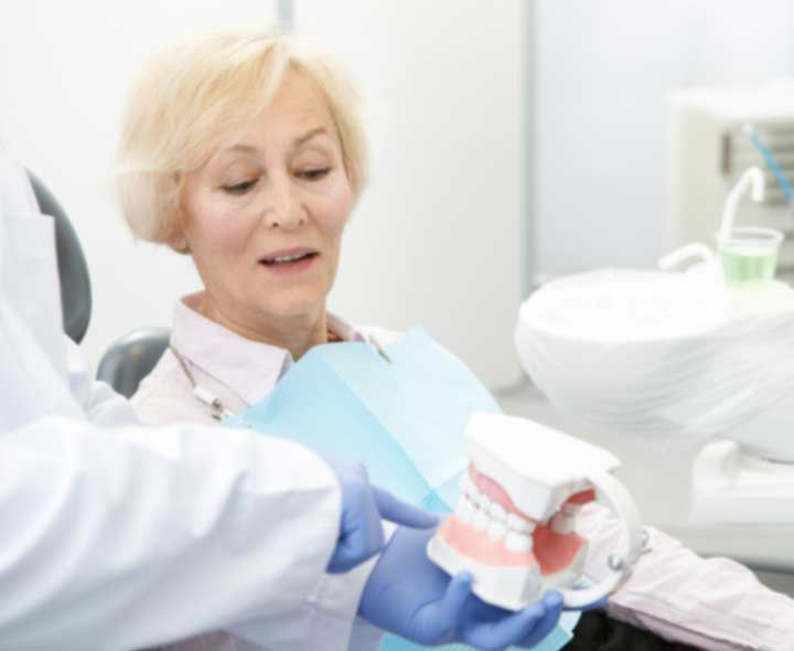 Dentist showing female patient model of teeth