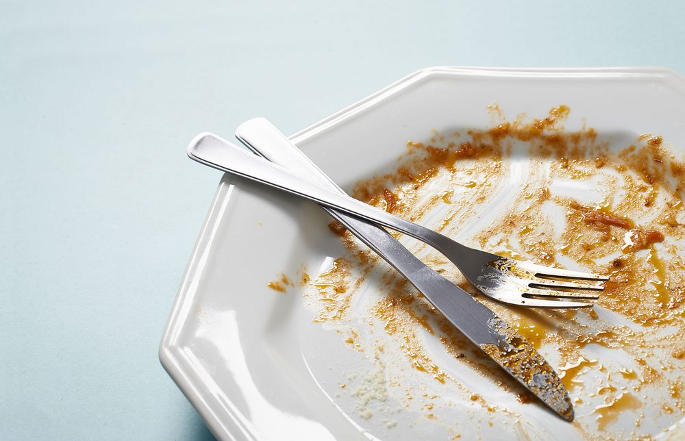 An empty plate after a meal